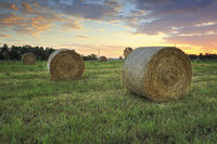 Hay bales in the Hawkesbury fields with a pretty sunrise sky behind