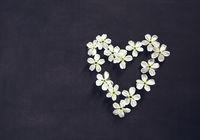 White flowers in shape of heart on black background