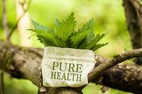 """Brennnesseln mit Wort """"Pure Health"""""""