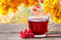 Cup of black tea with viburnum berries