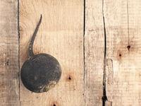 Black winter radish on wood