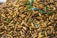 THAILAND ISAN PHIMAI THAI STREETFOOD INSECTS