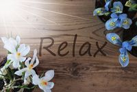Sunny Crocus And Hyacinth, Text Relax