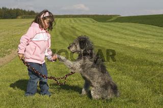 Hund gibt Pfote, Dog gives paw