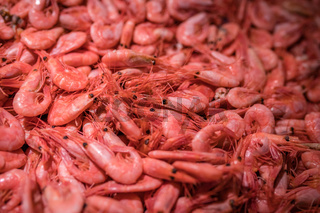 Fresh prawns in cold display