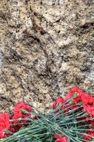 Red carnations on the background of a granite slab.