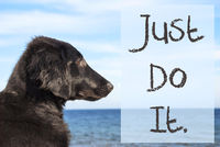 Dog At Ocean, Text Just Do It