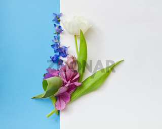 Composition of flowers on background