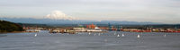 Sailboat Regatta Commencement Bay Port of Tacoma Mt Rainier