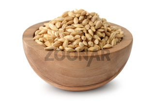 Wooden bowl of barley grains