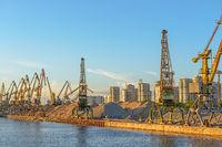 Cargo cranes in port