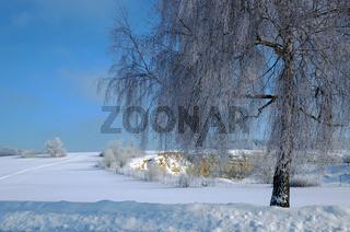 Winterstimmung auf der Schwaebischen Alb