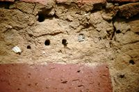 Brutröhren Insektenhotel