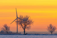 Wind turbines in a winter sunrise with snow and frost