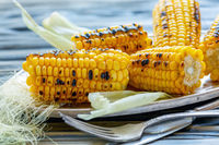 Dish with a cob of sweet corn grilled.