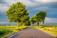 Rural road between fields in warm sunshine under dramatic sky