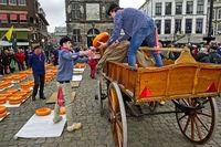 Holländische Käsejungen verladen Gouda Käselaibe, Käsemarkt Gouda, Niederlande