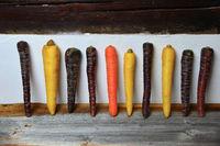verschiedene Urmöhren auf einem Holzbrett in der Küche