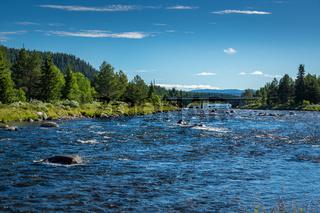 Golsfjellet in Norwegen-16
