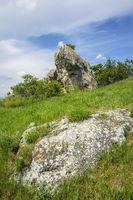 Felsen in der Wiese im Burgenland