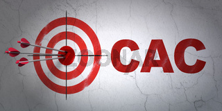 Stock market indexes concept: target and CAC on wall background