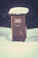 British Snowy Wheelie Bin