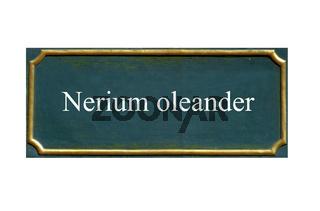 schild Oleander,Rosenlorbeer,Nerium oleander