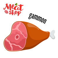 Meat vector - gammon. Fresh meat icon.