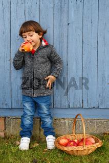 Kind Junge Apfel Obst Früchte essen Ganzkörper Hochformat Herbst gesunde Ernährung