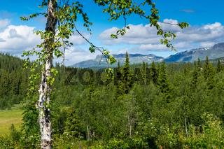 Landschaft in Jotunheimen-30