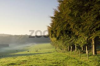 Mariendaal estate near Arnhem