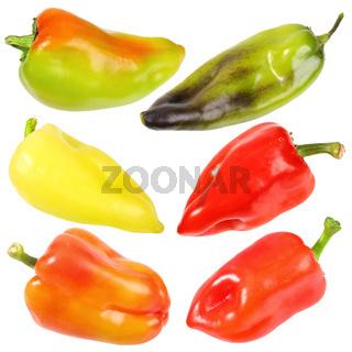 Set of six sweet fresh peppers