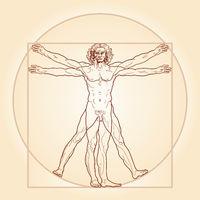 The Vitruvian man (Homo vitruviano)