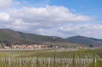 Blick über Weinfelder auf den Weinort Gleisweiler