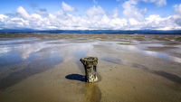 Old Piling in Humboldt Bay at Low Tide