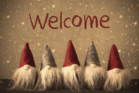 Gnomes, Snowflakes, Text Welcome