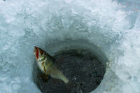 winter sport ice fishing