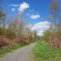 Weg am Schwarzwassersee in Blankenfelde im Norden von Berlin im Frühling