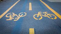 Bicycle signs painted on asphalt