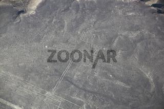 Aerial view of Nazca Lines - Hummingbird geoglyph, Peru.