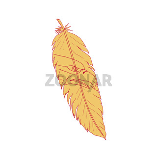Sea Eagle Head Inside Feather Drawing