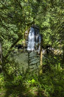 Waterfall in Washington State Park