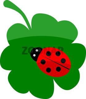 Lady bug on clover