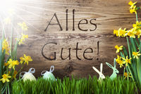 Sunny Easter Decoration, Gras, Alles Gute Means Best Wishes