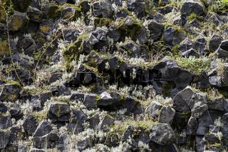 Detailaufnahme der Basaltsäulen auf dem Parkstein