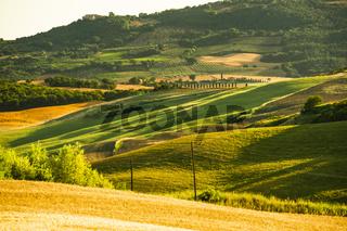 Hügellandschaft im Abendlicht der Crete Senesi, in der Nähe von Pienza, Toskana, Italien