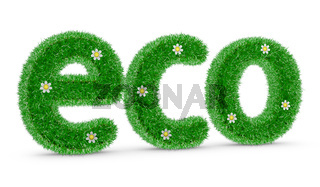 ECO with grass and flowers