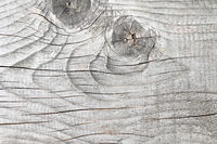 weathered fir wood texture with knot ( Abies alba )