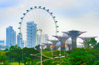 Singapore Flyer and Garden