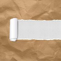 Torn Paper Edge Transparent Background